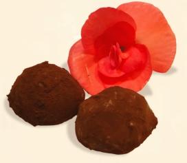Dr.雅子のチョコレート